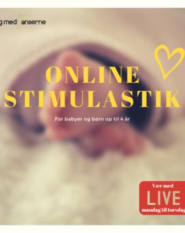 Stimulastik® Online